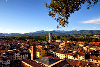 Lucca viewed from Guinigi Tower